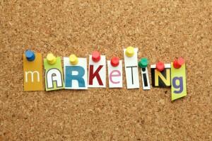 website marketing options
